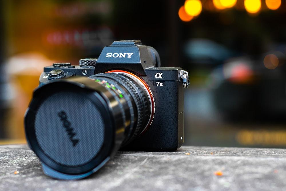 shallow focus photography black Sony DSLR camera