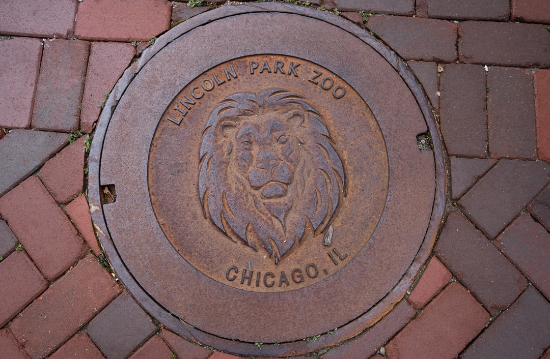 Looking down at the Lincoln Park Zoo.