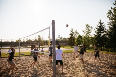 men playing volleyball near pine trees volleyball zoom background