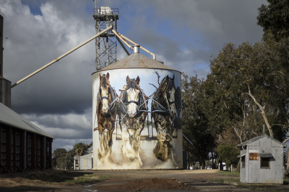 brown horses painted factory