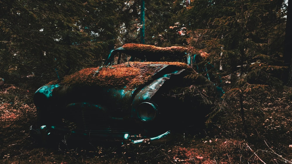 vintage gray vehicle near trees