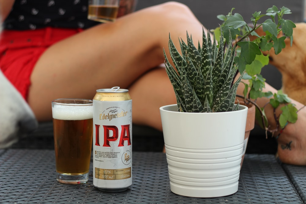 Ipa drinking tin can beside drinking glass