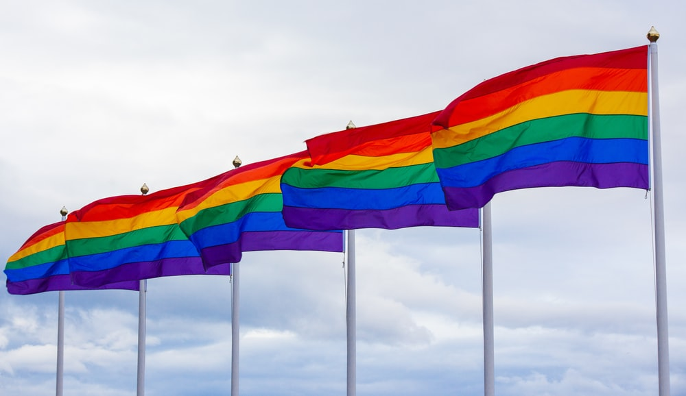 multicolored flags under white sky