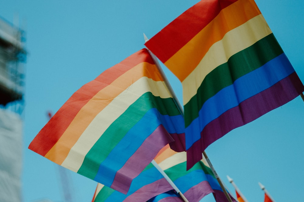 picture of rainbow flags