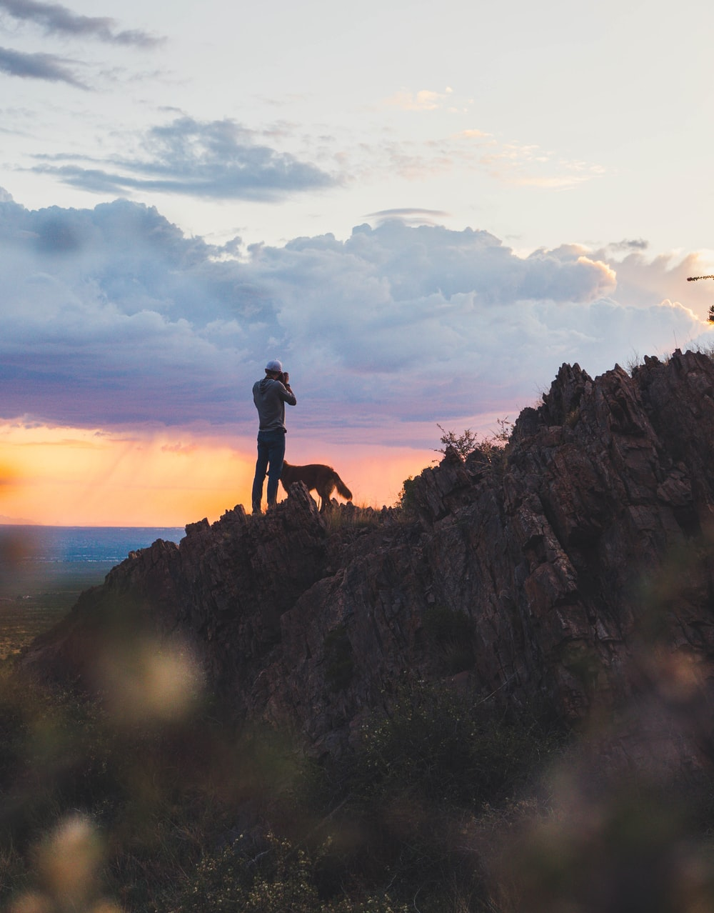 man standing on cliff beside dog