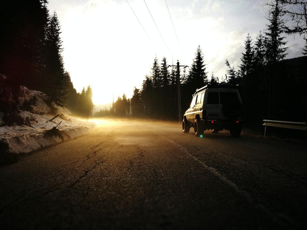 vehicle on road between trees
