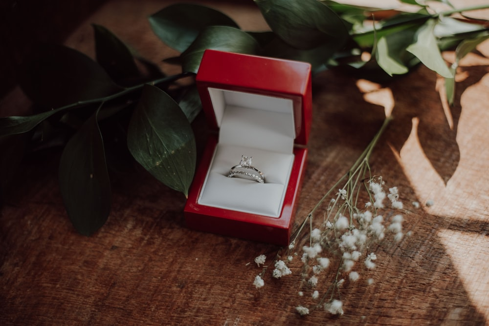 silver-colored ring in red box