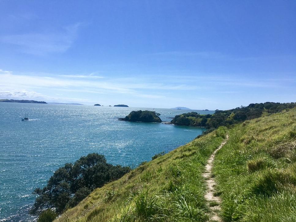 Waiheke Island , Auckland , New Zealand