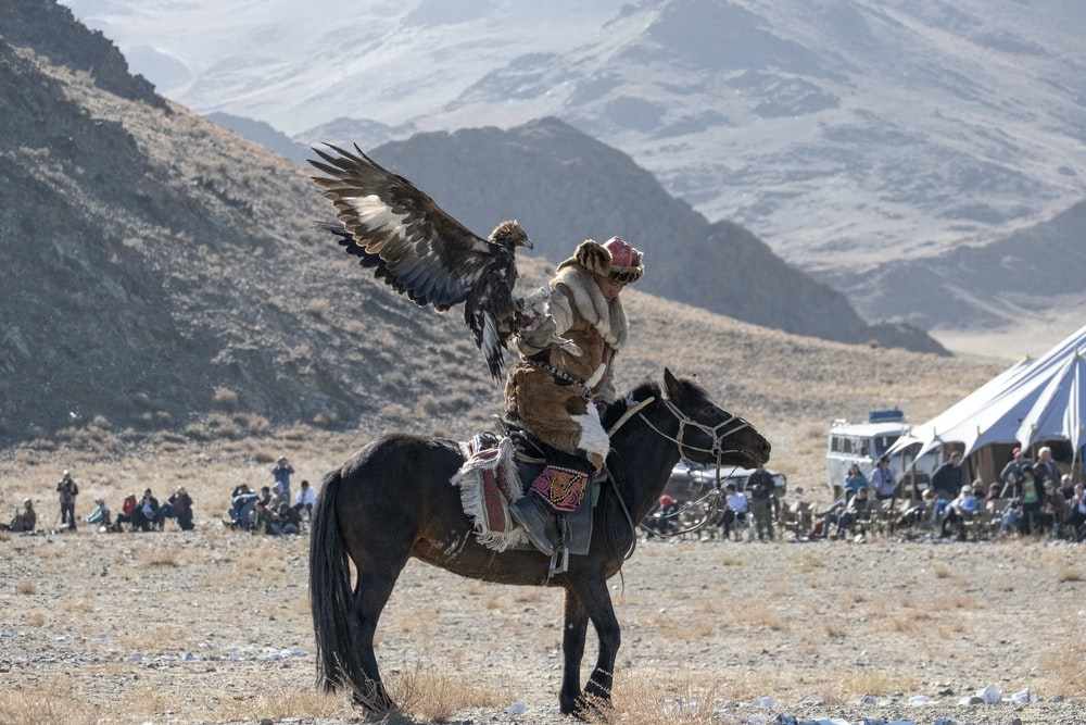 man riding horse with bird on his arm