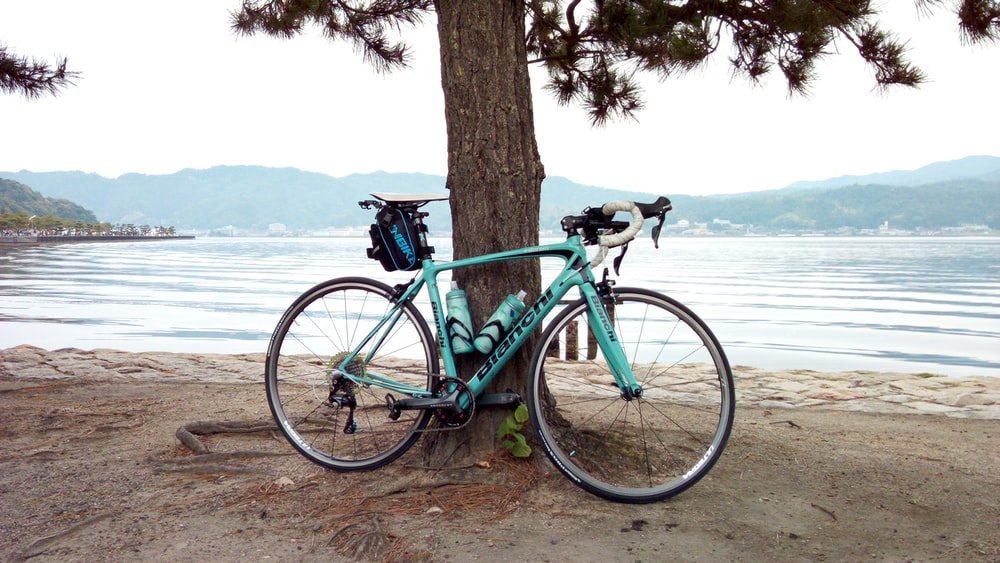 road bike parked beside tree near the lake during day