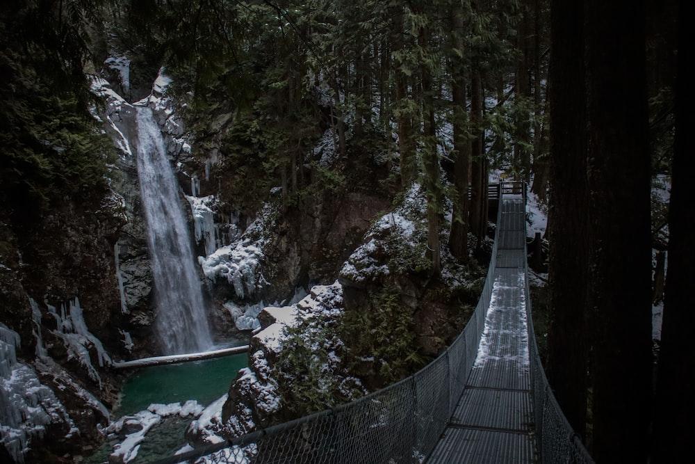 photography of hanging bridge during daytime