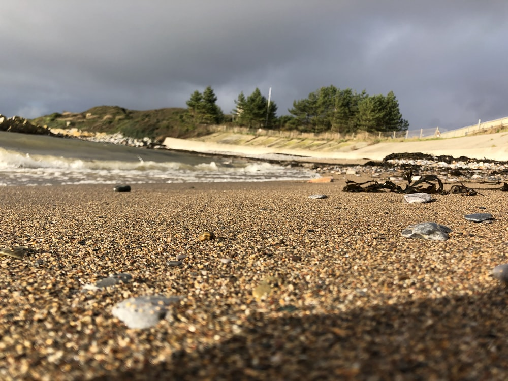 landscape photography of shore