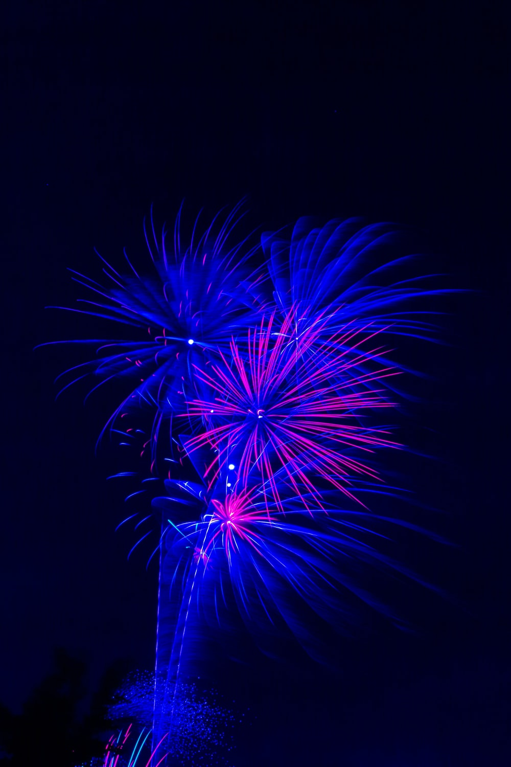blue and pink fireworks