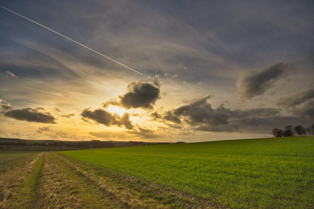 Landscape Walking, train and flight
