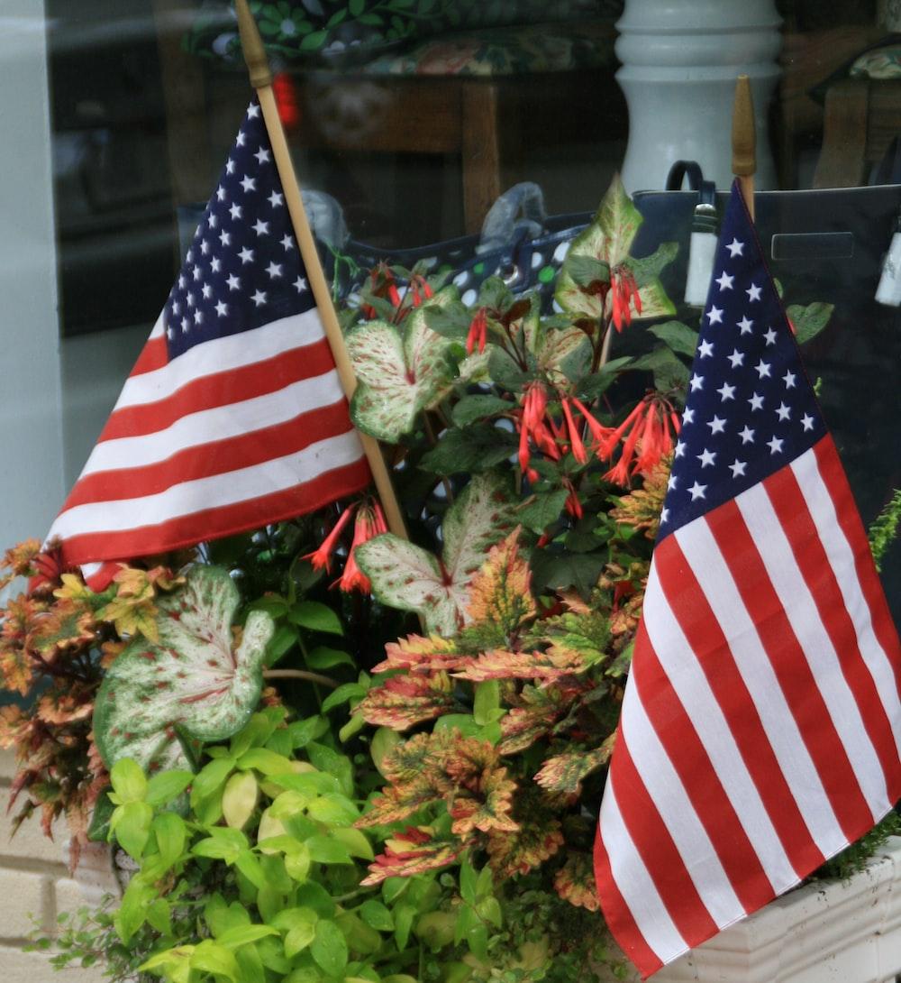 USA flaglets