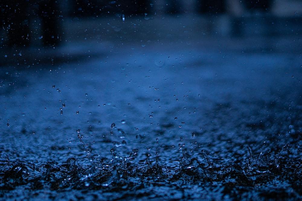close-up photography of rain drops