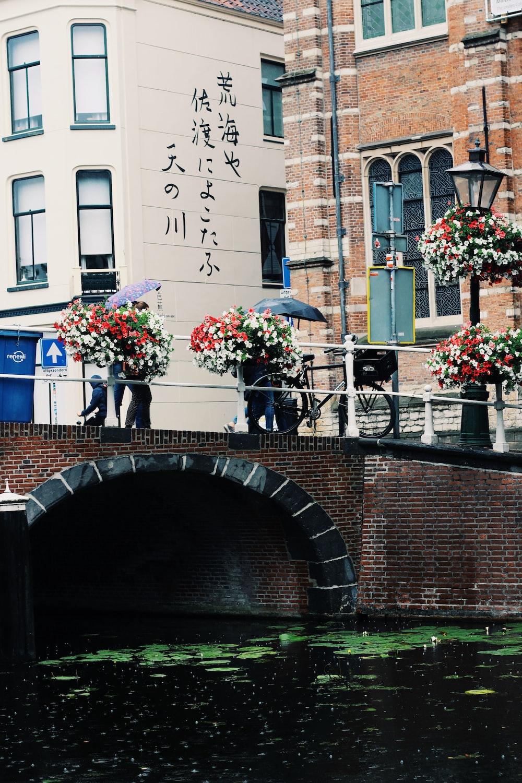 two person with umbrellas walking on concrete bridge