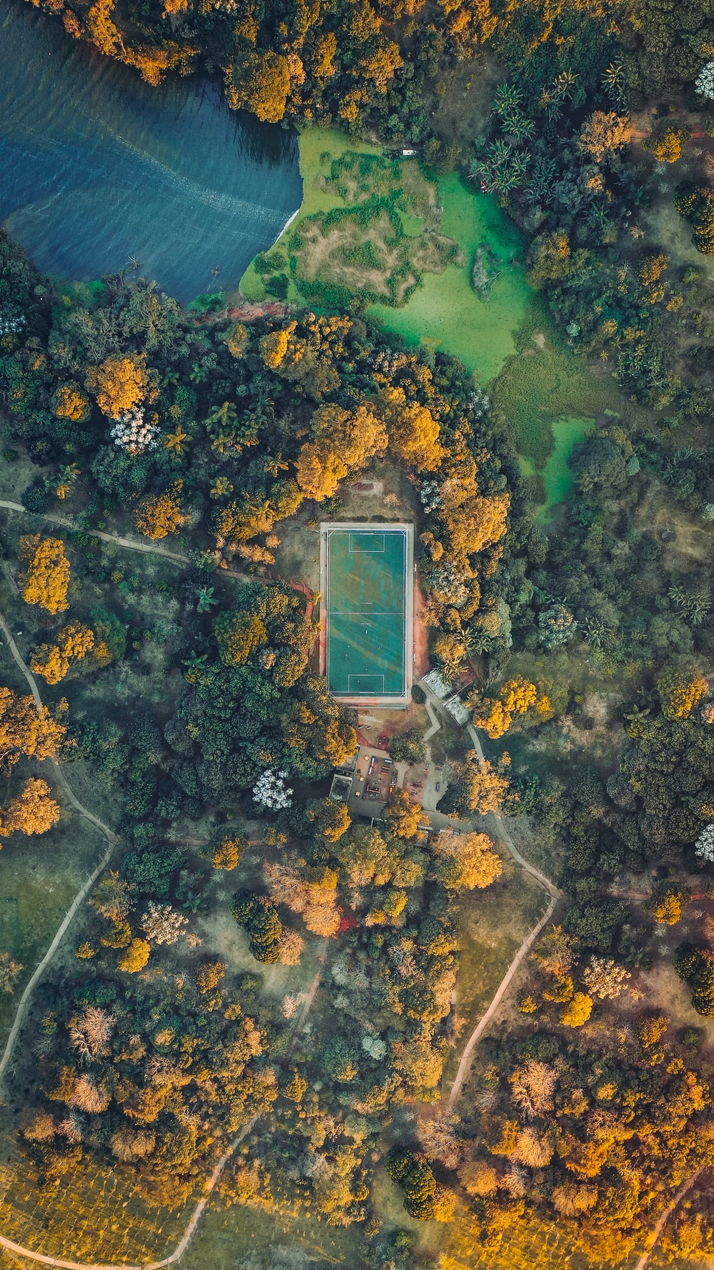 green field during daytime top-view photography