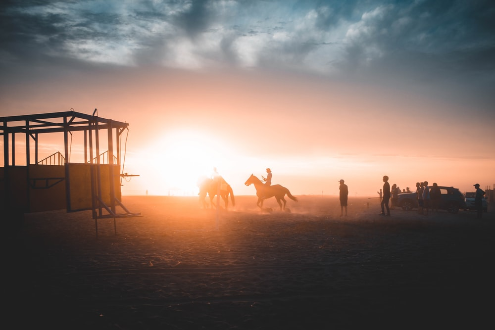 silhouette of person riding horse during daytime
