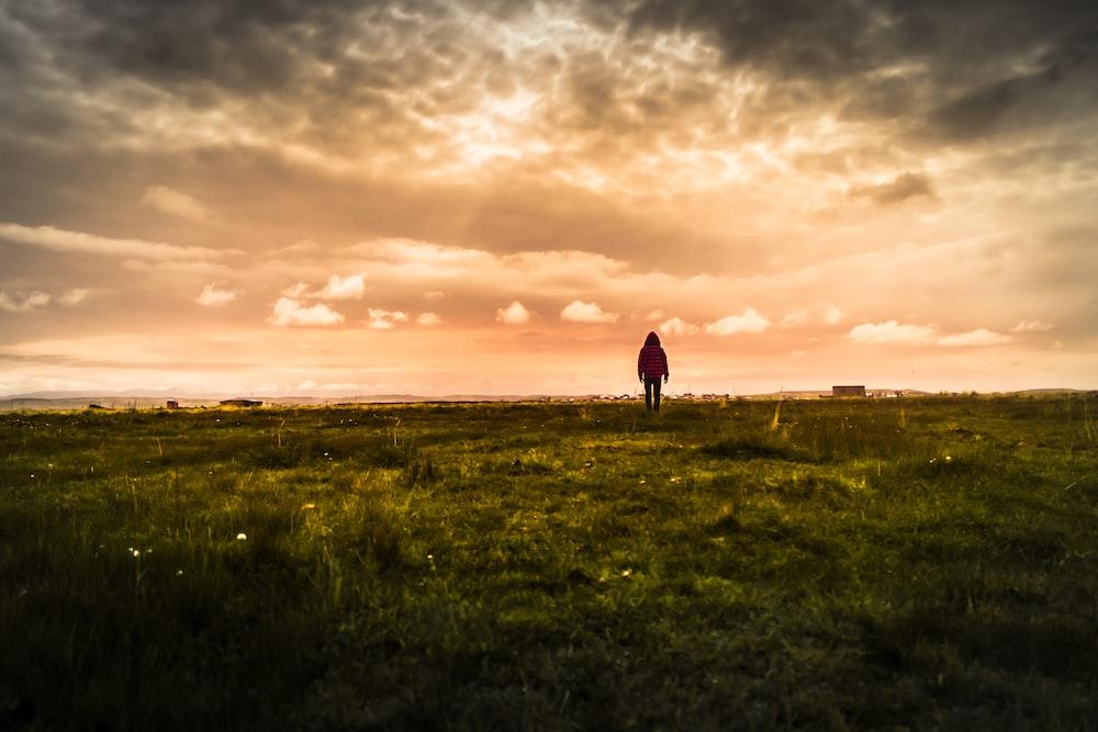 person standing on green field under orange skies