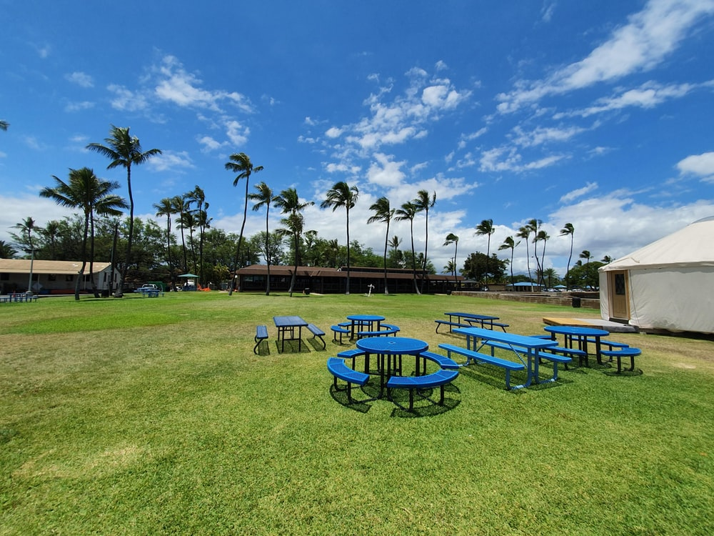 blue picnic tables on grass field at daytime