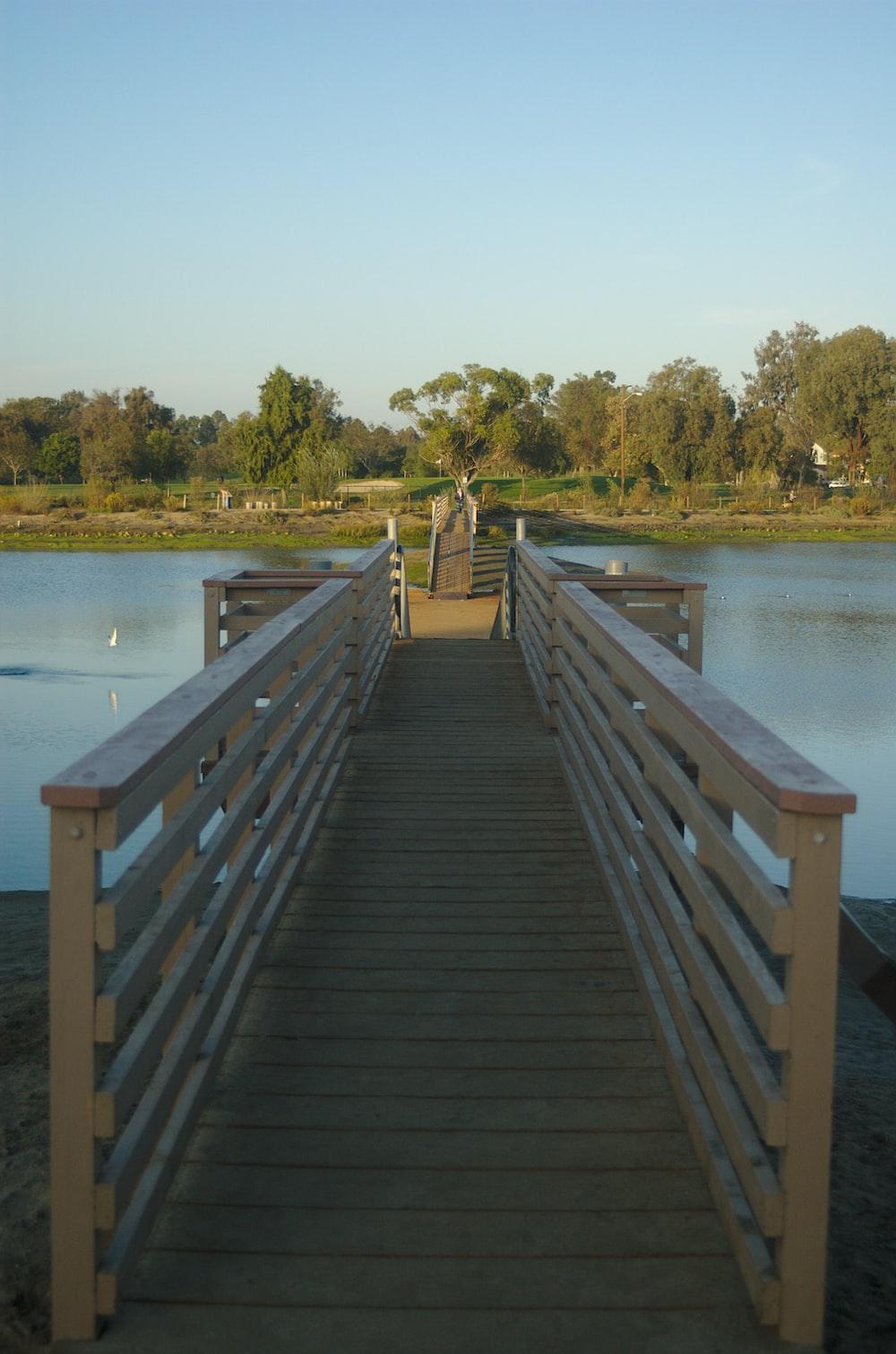 brown wooden dock at daytime