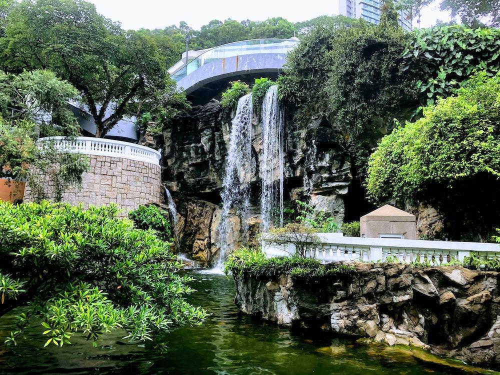 raging waterfalls near tree s