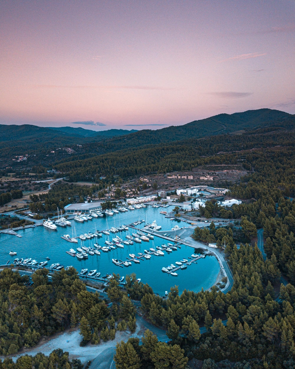 aerial photography of yacht and pine trees during daytime