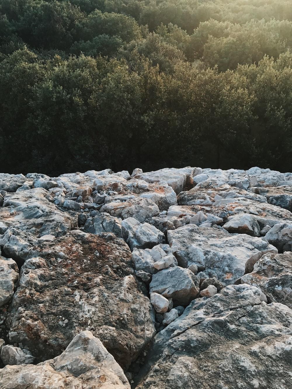 gray and brown rocks