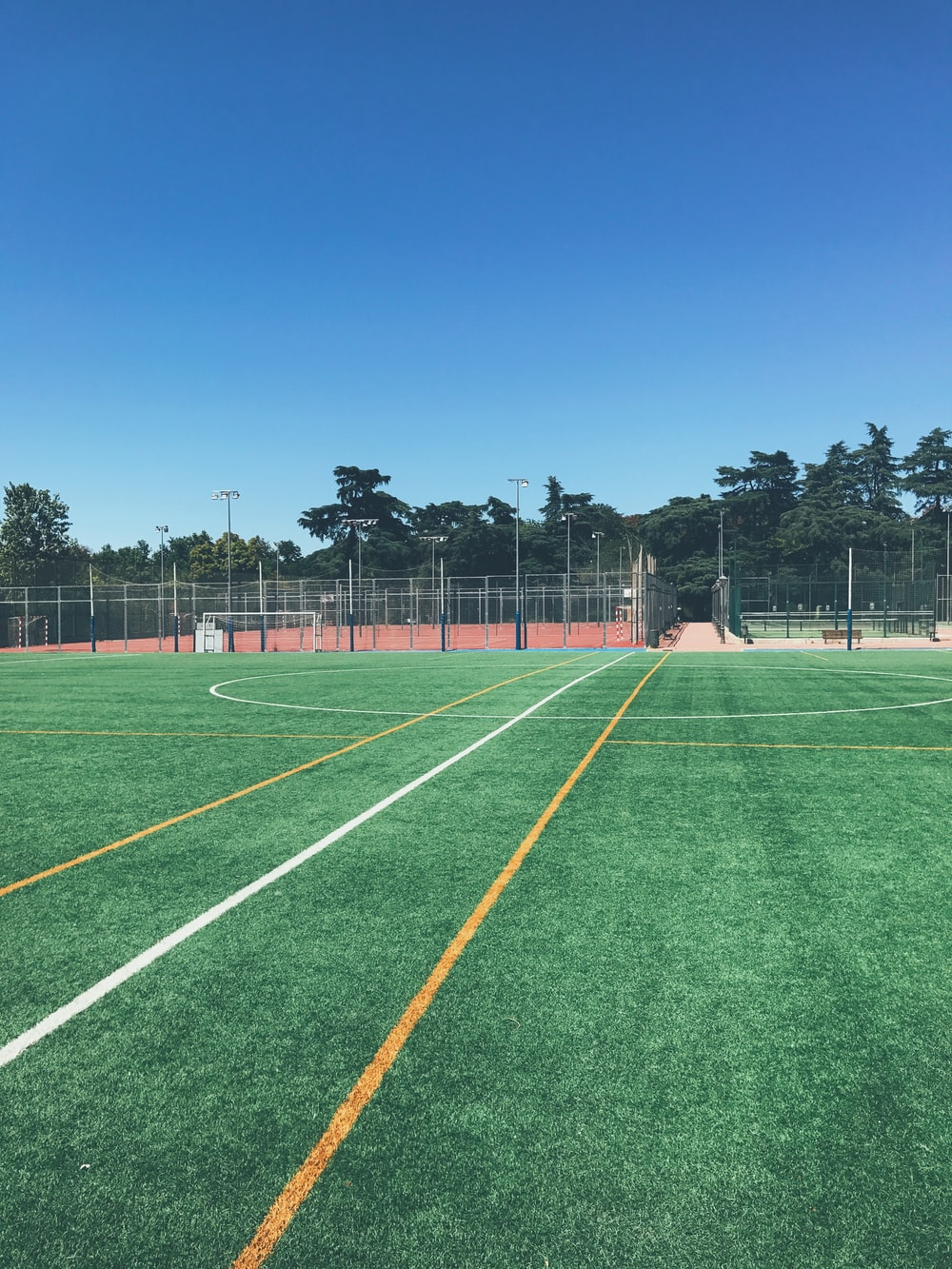 green soccer field with no people near trees