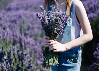 selective focus photography of woman holding purple petaled flower during daytime