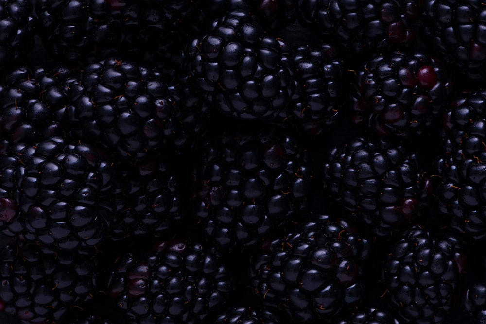 blackberry fruits