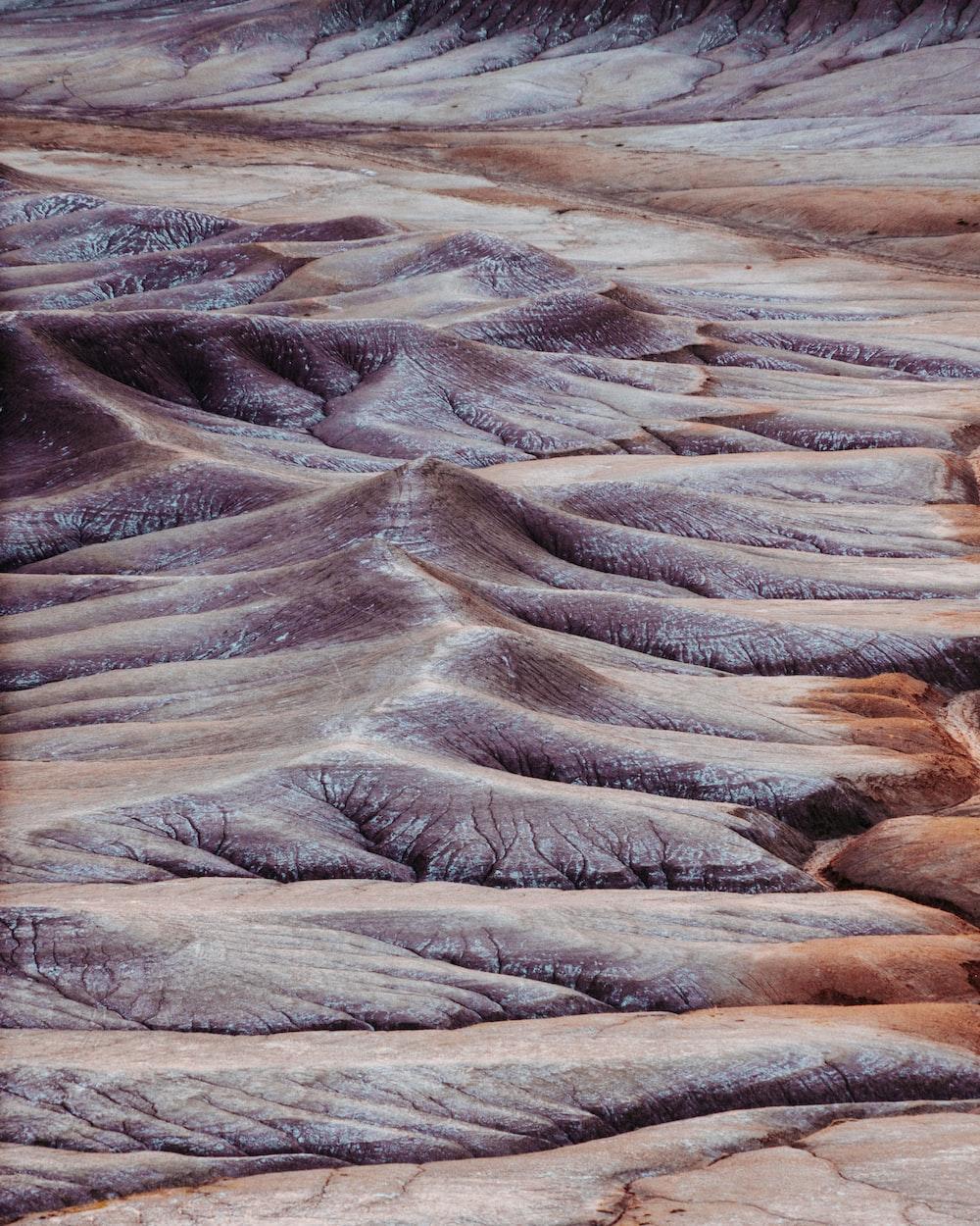 desert photography