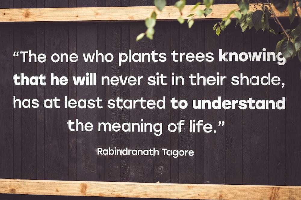 Robindranath Tagore quote wall art