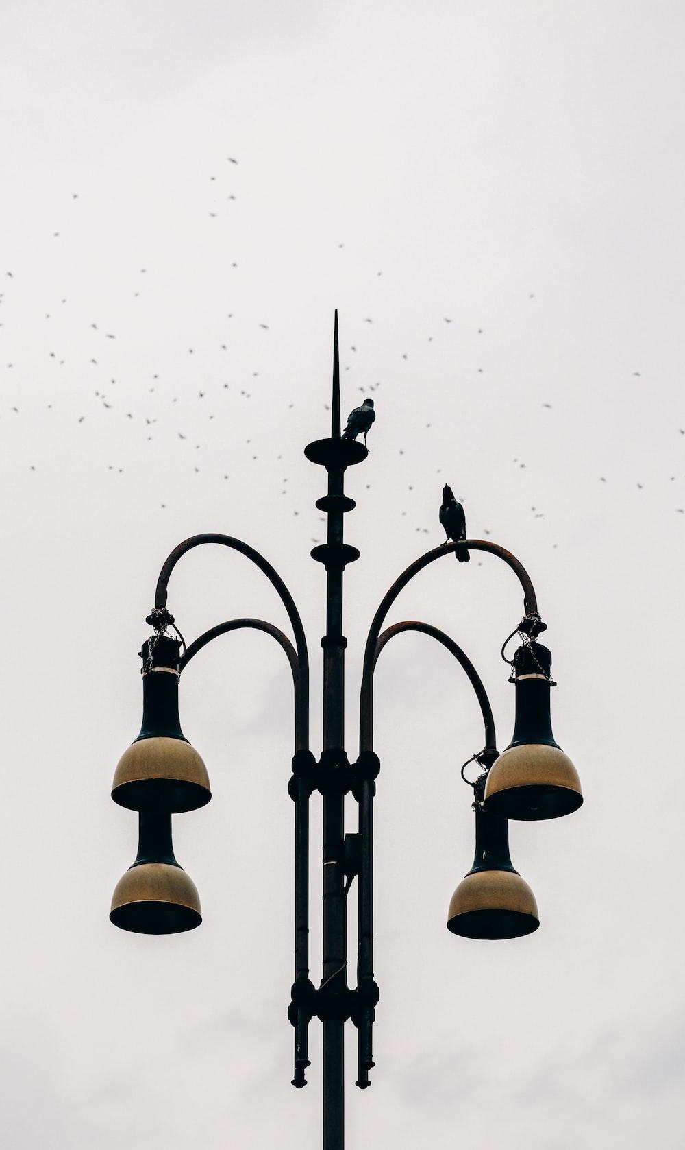 black framed metal stand lamp during daytime