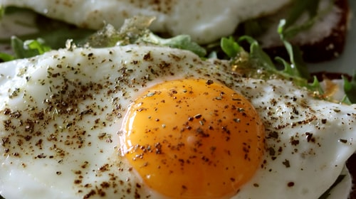 Can Eggs Make You Lose Weight