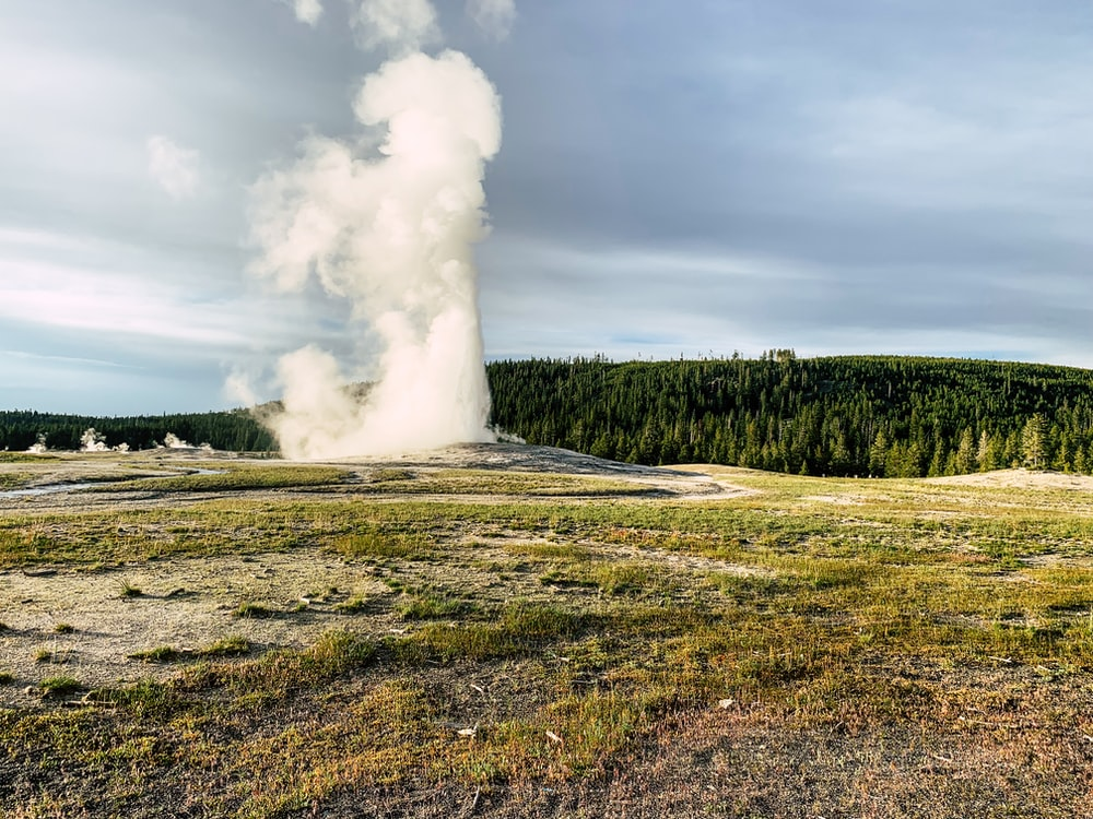 white geyser spout in green grass field