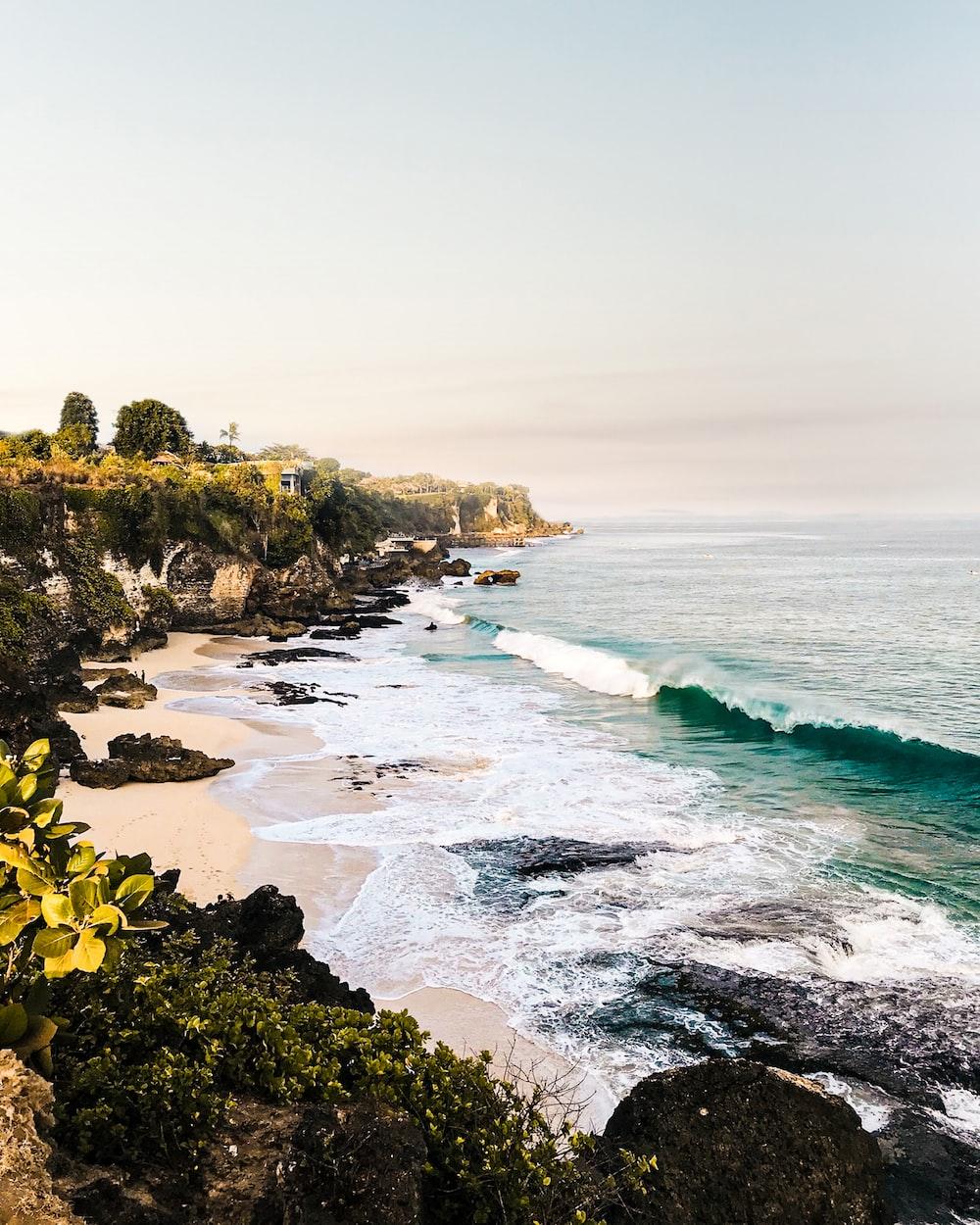 landscape photograph of beach
