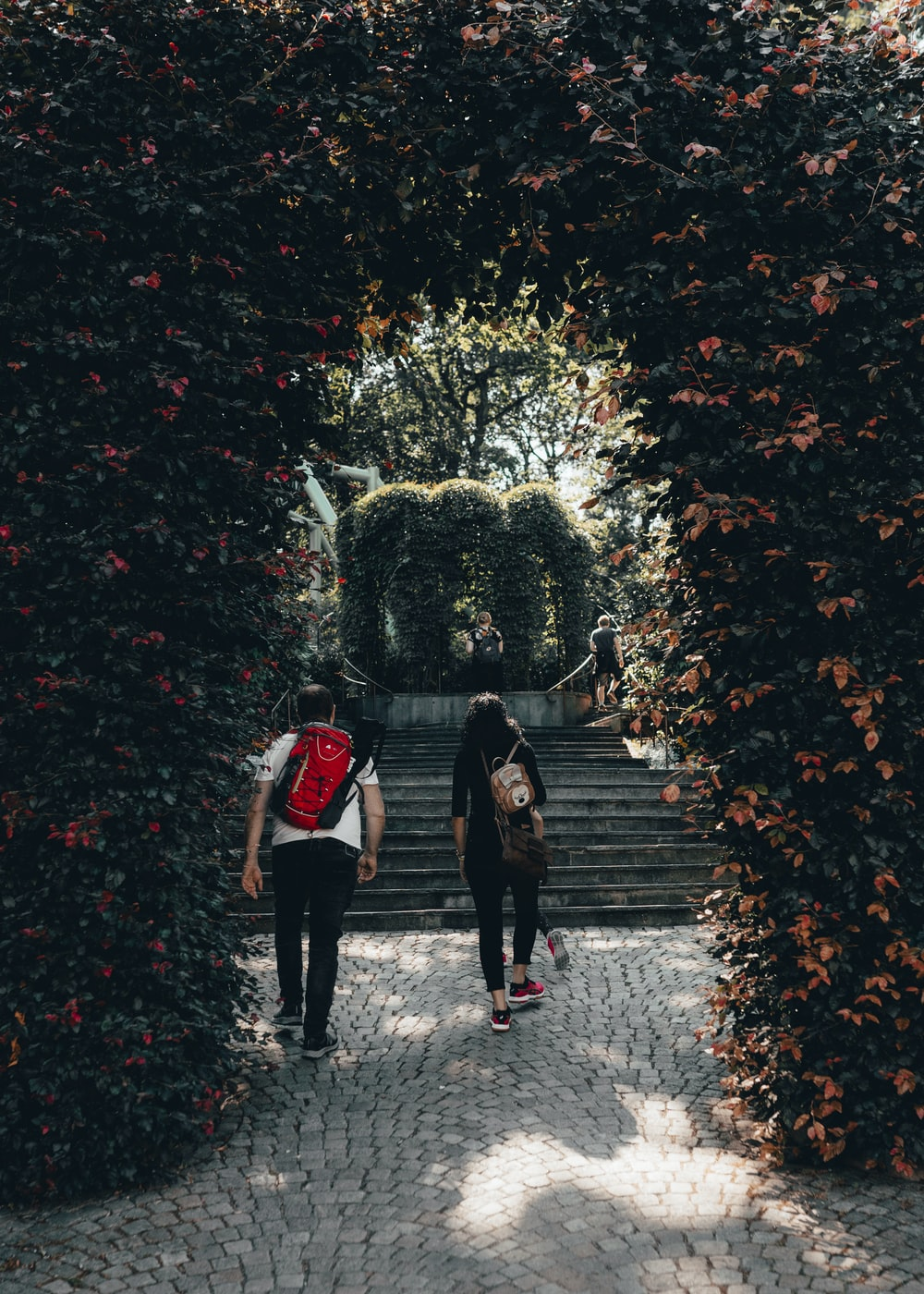 woman and man walking on pathway