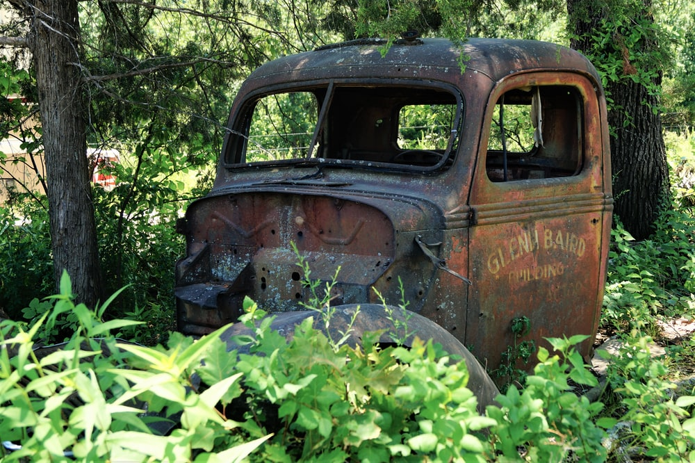 abandoned brown vehicle surrounded with tall and green trees