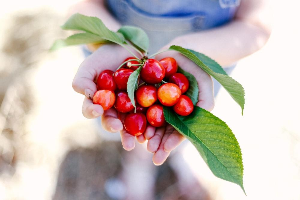 red berries