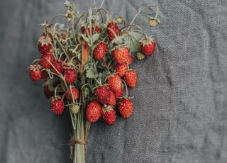 red strawberries on gray textile
