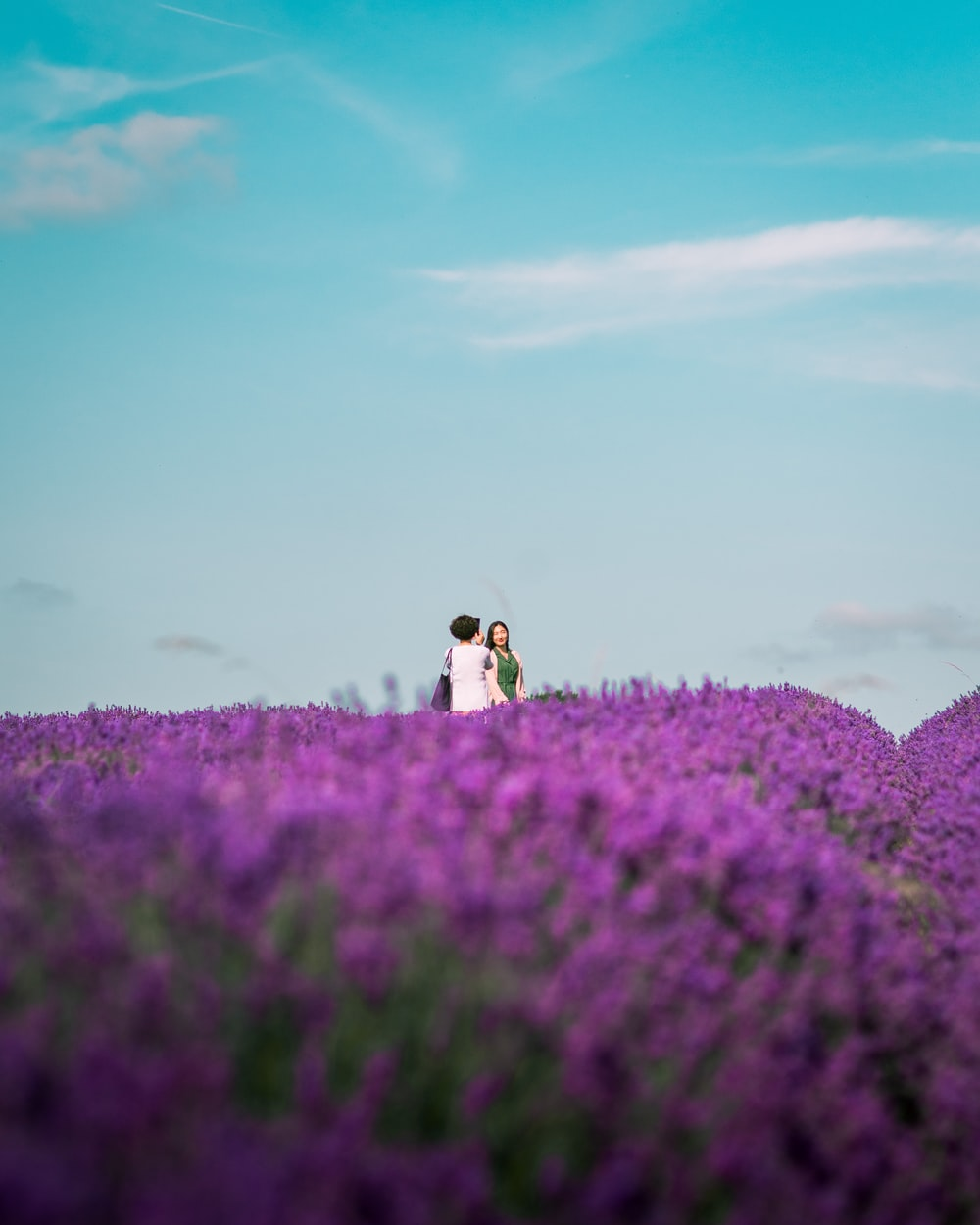 three people standing on purple flower field under blue and white skies