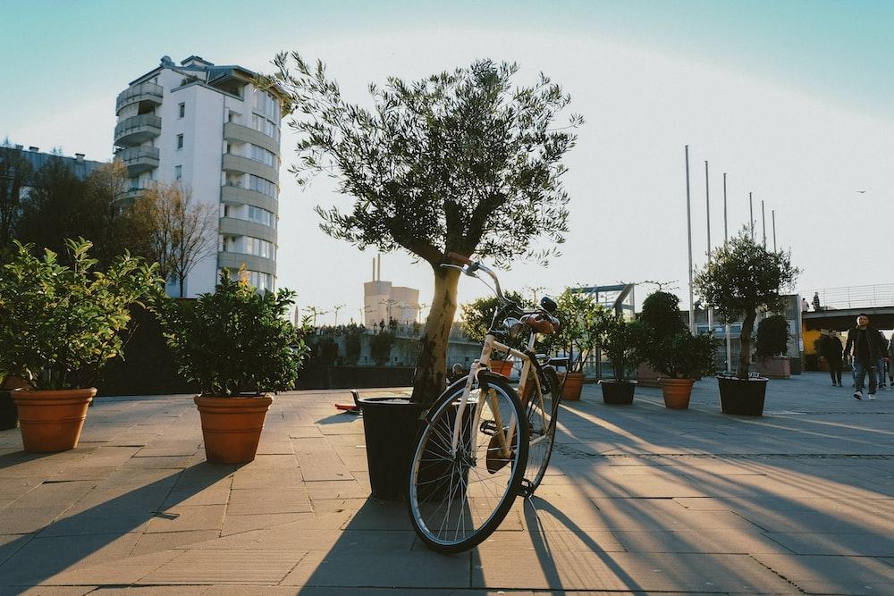 beige bike near plants and trees