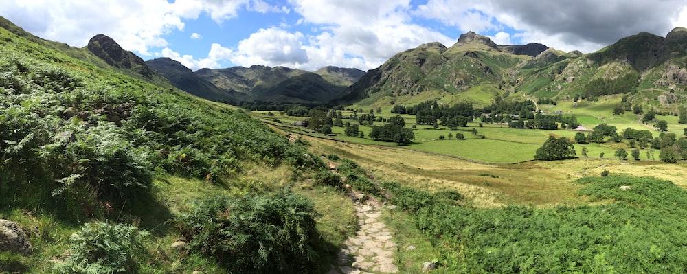 pathway between mountains