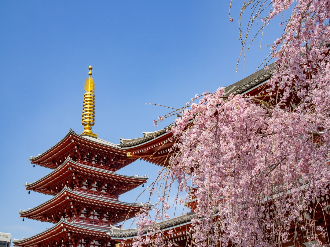 senso-ji temple asakusa japan