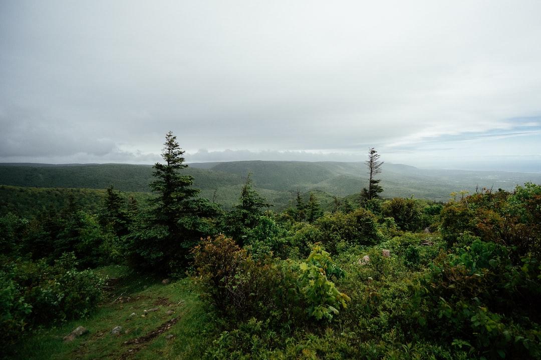 Cape Breton Highlands National Park of Canada