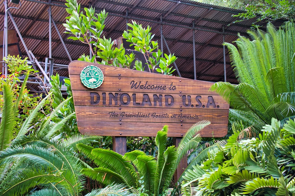 brown wooden signage near plants
