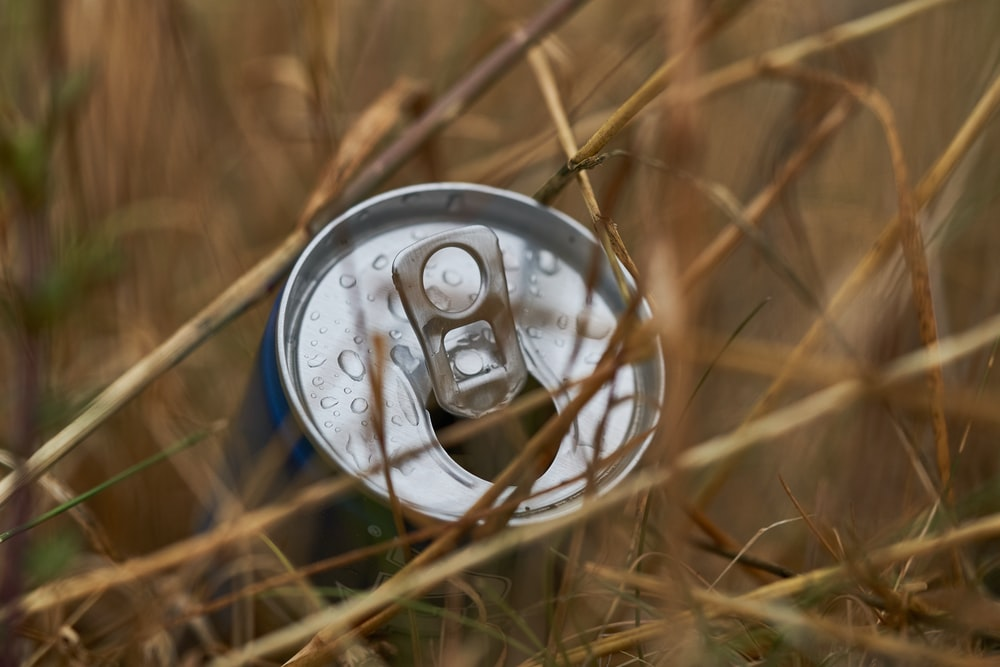 beverage can on grass