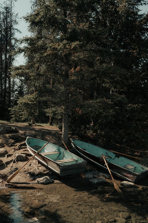 two canoe park beside trees